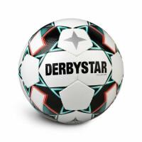Fußbälle Derbystar